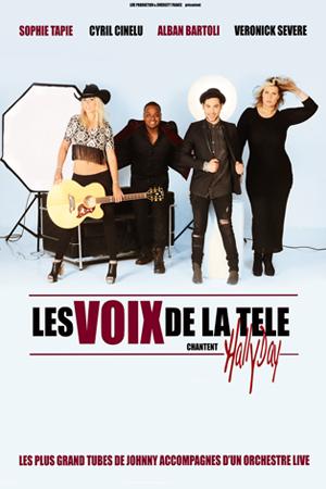 LES VOIX DE LA TELE CHANTENT HALLYDAY
